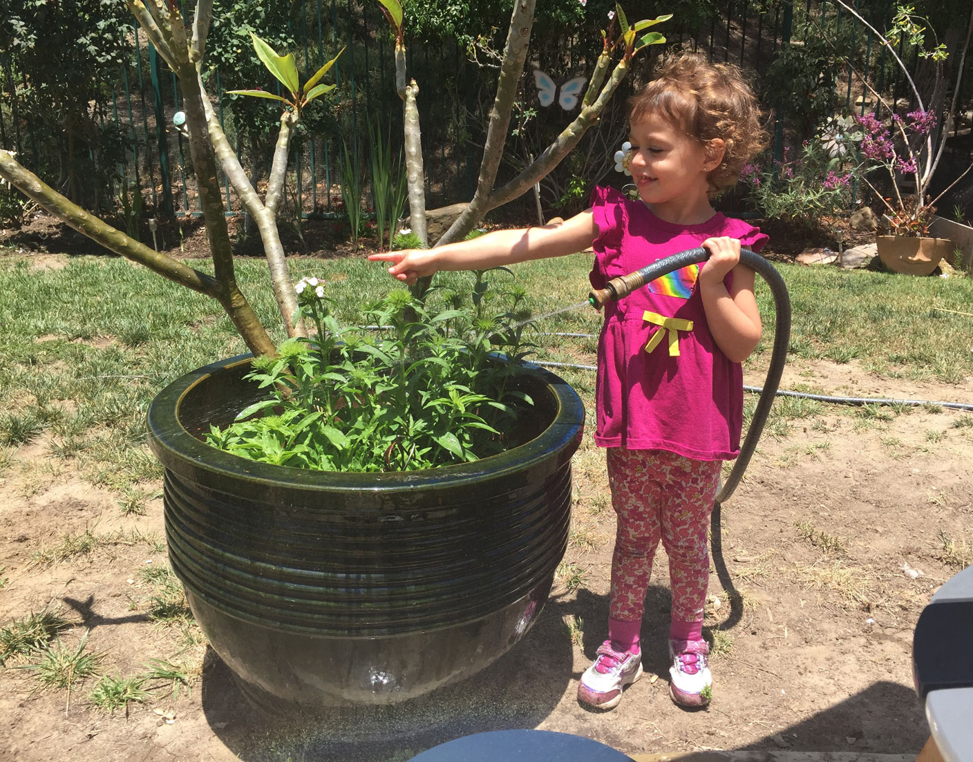 Child Watering Plants 4 2017
